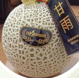 Amaiame Melon